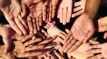Group of diverse people displaying their hands