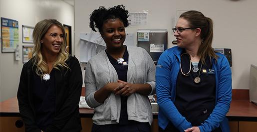 Veterinary Student Job Program Banfield Pet Hospital Jobs