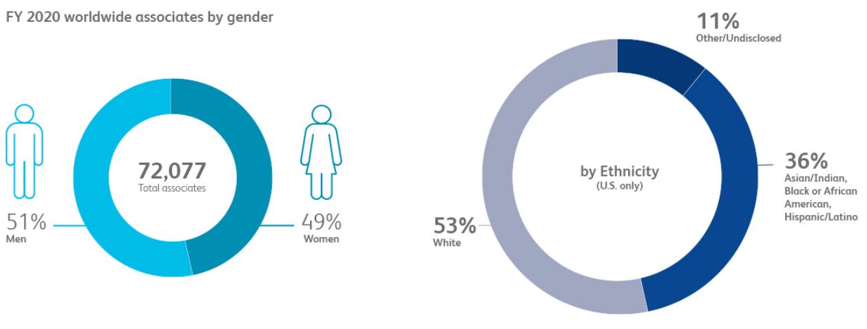 Pie Chart: Associates by Gender Ethinicity