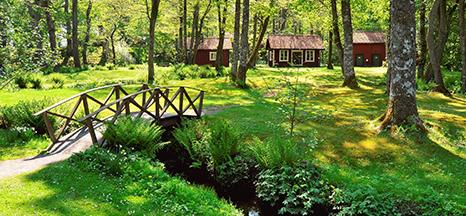 Image for Sweden
