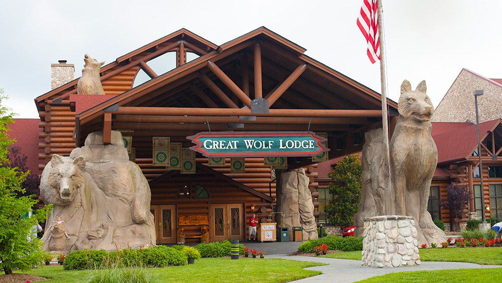 The Ultimate Kid Friendly Resort That Parents Will Love ...  |Great Wolf Williamsburg