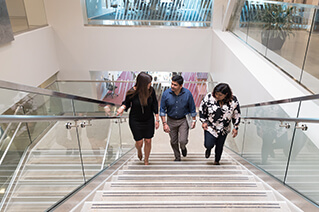 Group of employees walking up office stairs together.