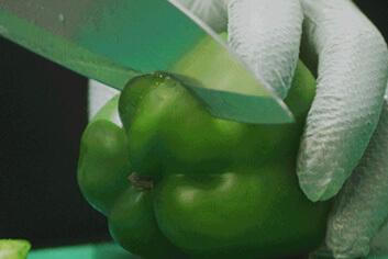 El miembro de Chipotle Kitchen Crew prepara pimientos verdes frescos cortándolos con un cuchillo en la tabla de cortar.