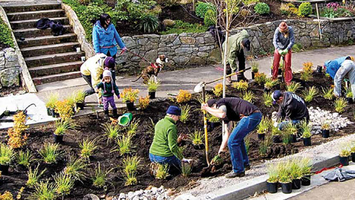 Portland community gardening