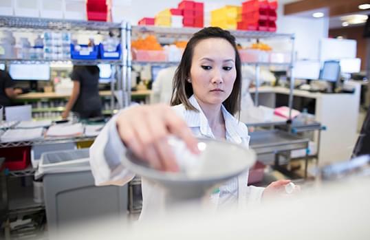pharmacist working in the pharmacy