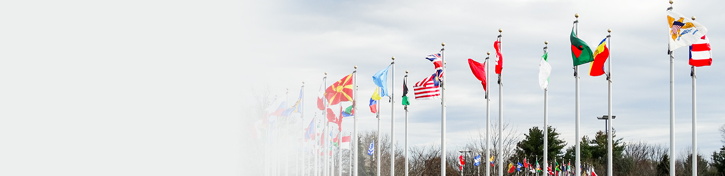 Flags from many different nations flow in the wind