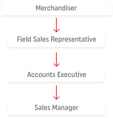 Field Sales Representative at the beginning then either Accounts Manager or Team Leader, then Sales Manager
