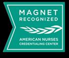 Magnet Recognized