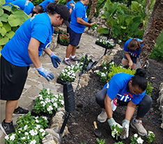 Citi employees planting flowers in a garden