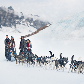 people on a dog sled