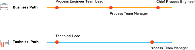Business career path. First, Process Engineer Team Lead. Second, Process Team Manager. Third, Chief Process Engineer. Next, the Technical Career Path. First, Tehnical Lead. Second, Process Team Manager.