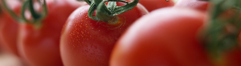 A closeup of several red, ripened tomatos. One of the tomatos has moisture glistening on it.