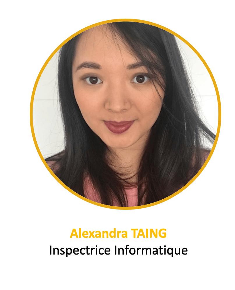 Alexandra - inspecteur IT