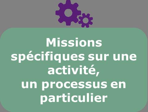 Missions specifiques à une activité, un processus en particulier