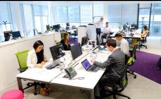 Photo de collègues à leurs postes de travail dans un bureau