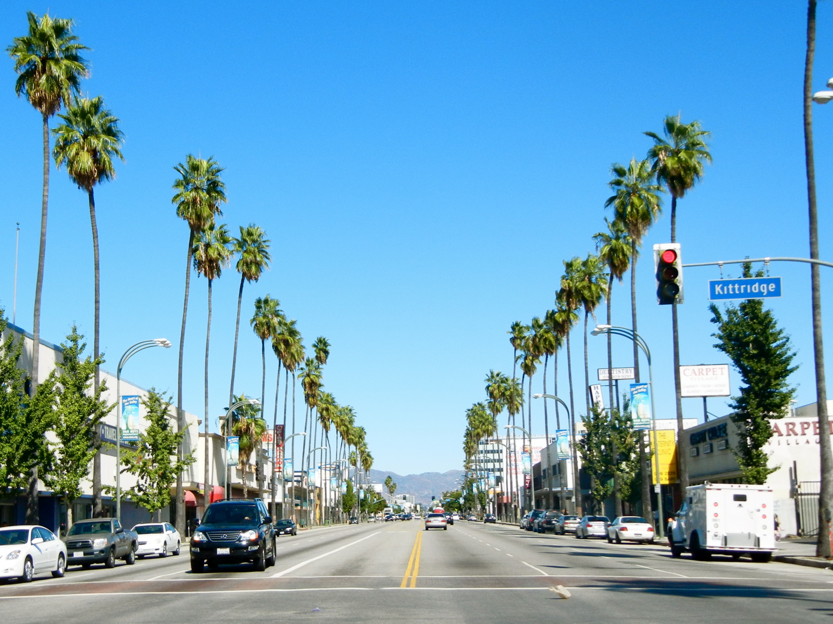 Los Angeles street lined with palm trees