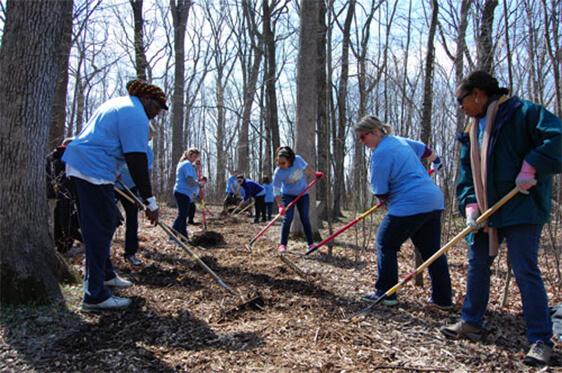SC Johnson Volunteers Raking Mulch during volunteer event.