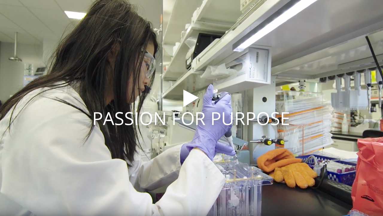 Passion for Purpose video, click enter to play video