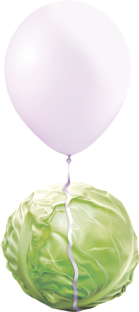 Balloon attached to lettuce