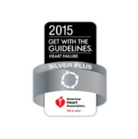 Good with guidelines Silver