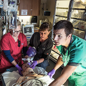 Things I Learned as an RN in the Emergency Department