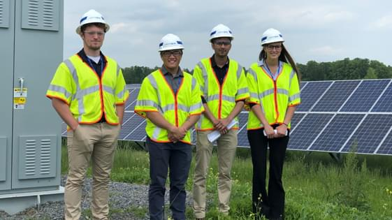 group of Gridterns visiting a site