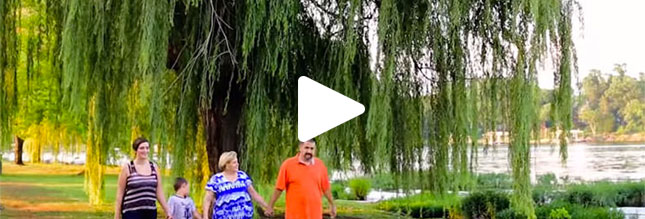 A still from a video showing a family walking past a weeping willow tree
