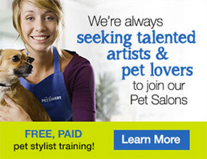 Seeking talented artists and pet lovers