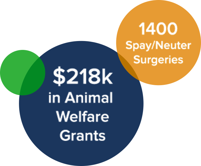 $218k in Animal Welfare Grants. 1400 Spay/Neuter Surgeries.