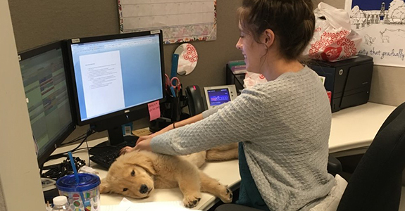 Sam working in the office with a dog on her desk.
